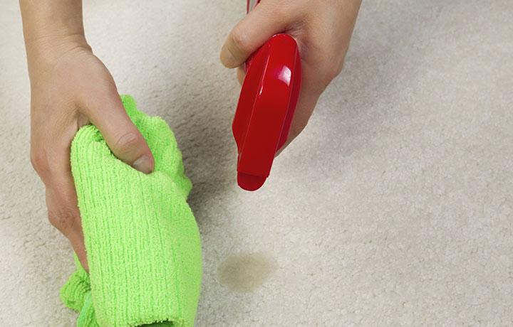 comment nettoyer un d g t sur votre tapis couvre. Black Bedroom Furniture Sets. Home Design Ideas